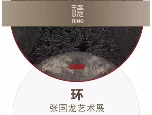 环——张国龙艺术展